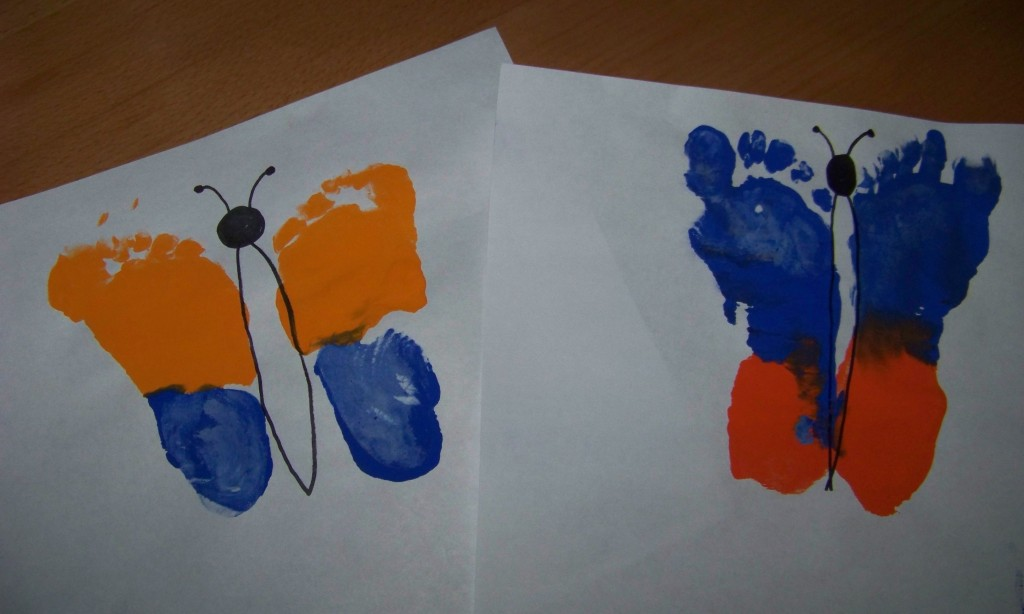 Butterfly Footprint